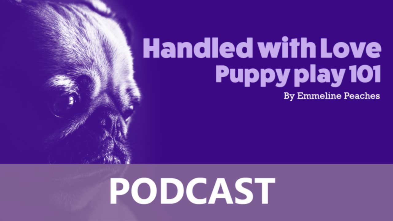Podcast - Puppy play 101 Discussion