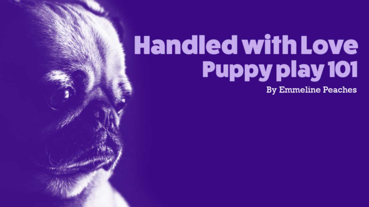 Handled With Love - Puppy Play 101